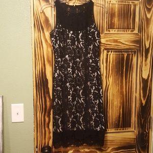 White House Black Market black and tan lace dress